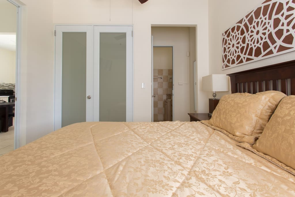 master bedroom with walk in closet and access to bathroom