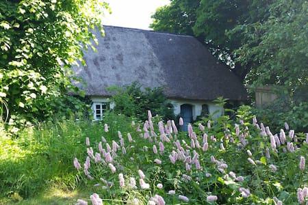 Urlaub in Nordfriesland - Enge-Sande - Hus