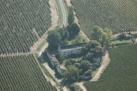 B&B Saumur Vineyards Loire Valley - Saumur - Bed & Breakfast