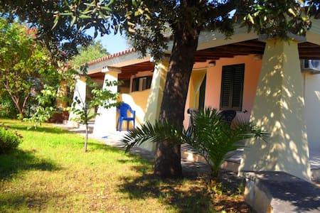 """villa 800 meters from the sea """"B""""  - Orosei - Villa"""