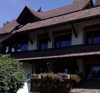 Swiss Chalet - Edge of Zurich  - Bungalo