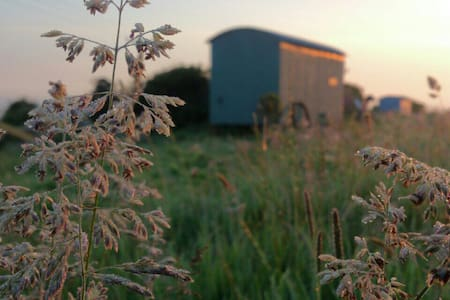 A great romantic outdoor holiday with bespoke  Ives is the ideal location for shepherd huts with its cornish green hills, contrasting the blueness of the horizon and sea. You have it all from our location and more.