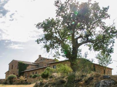 Cosy studio: Val d'Orcia view_B&B - Pienza Siena - Leilighet
