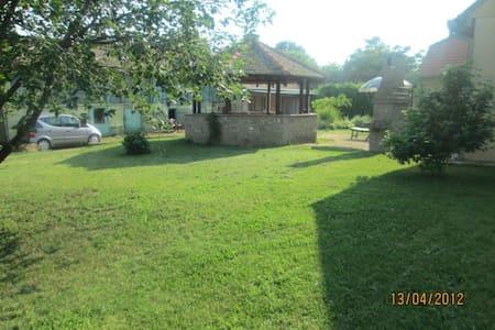 Charming house in Fruska Gora - Pavlovci, Serbia - Haus