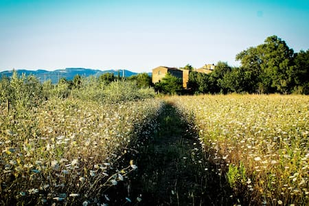 Magic Maremma Farmhouse - Sovana