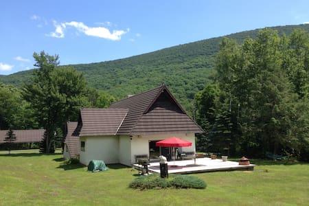 Pvt home on estate near Hunter Mtn  - Ház