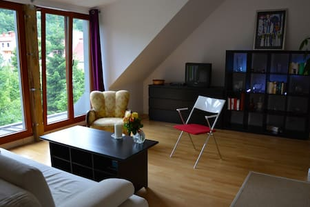 Forest view apartment - central