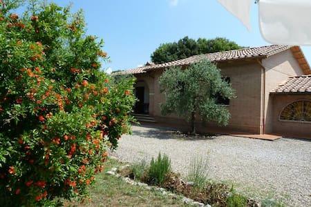 Beautiful Villa with Swimming Pool - Santa Colomba - Villa