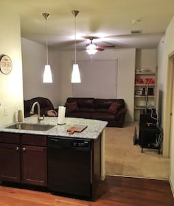 Upscale apartment! Great pool!!! - Lewisville