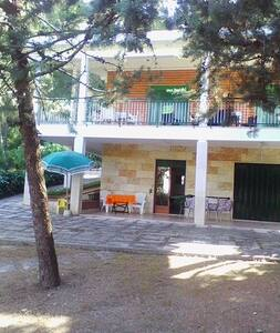 Ampia villa in pineta - Villa