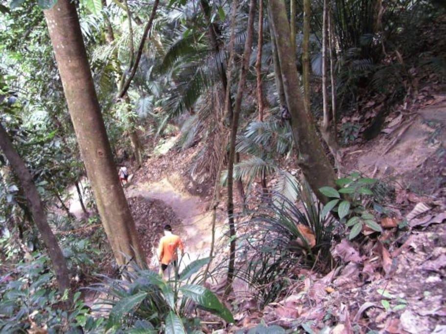 Saga Trail_2.4km away