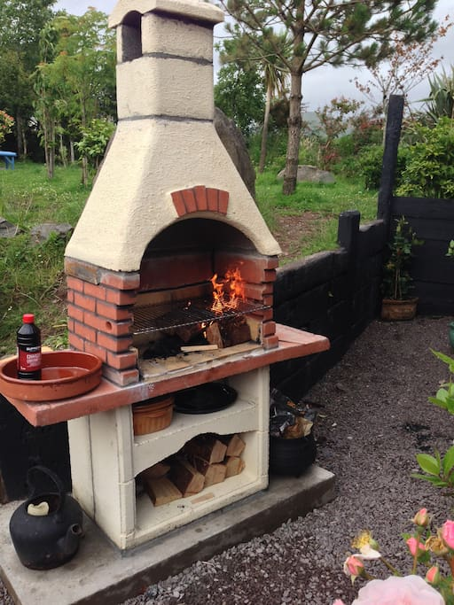 Outdoor wood/charcoal oven!