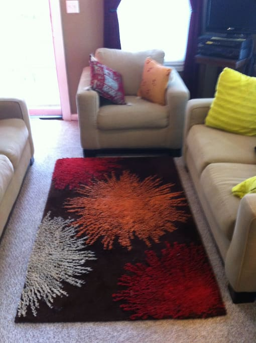 Colorful ,comfy wool rug anchors the living space.