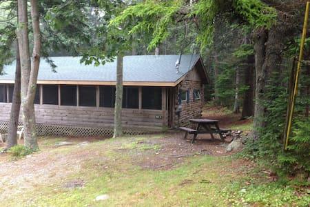 Sherwood Forest Cabin #4 - Cabin