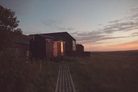 Vanellus @ Elmley Nature Reserve - Hut