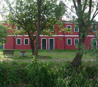 Agriturismo Monte Scala  - House