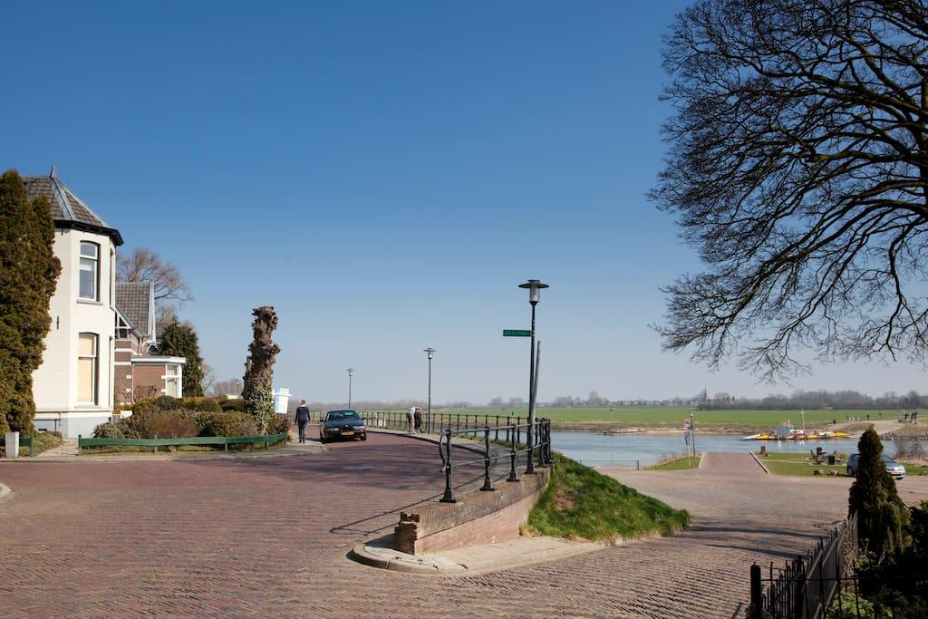 river IJssel, Dieren