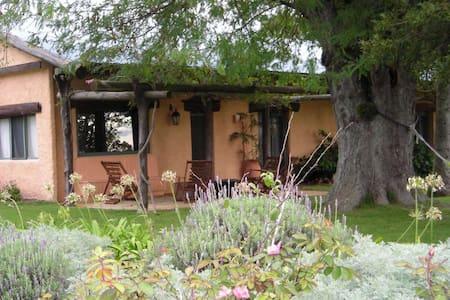A beautiful farm house on 30 acres! - Solís - Chalupa