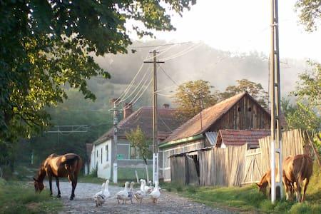 Genuine traditional household - Casa