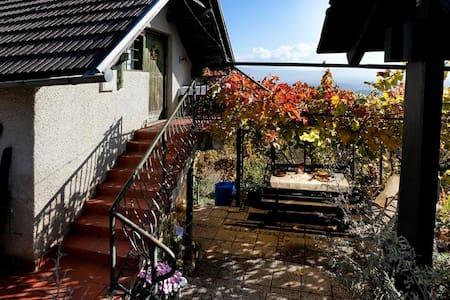 Vineyard cottage Verček - Ev