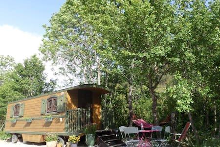 Roulotte des Carpates - Cabin