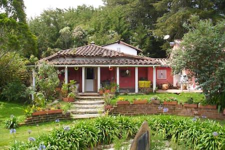 La Casa de Filo | Medellín - Santa Elena - Hus