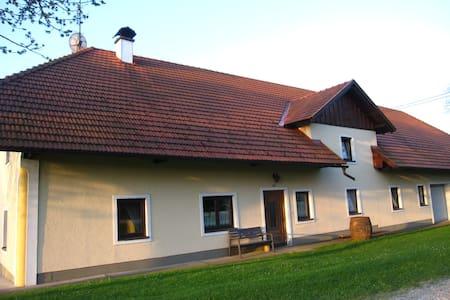 Urige Wohnung im Vierkanthof - Daire