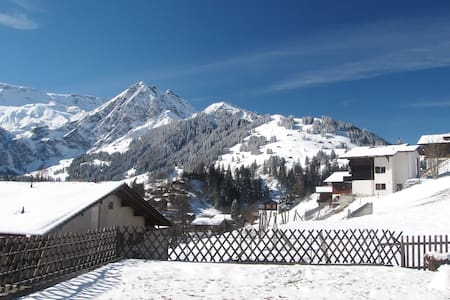 Panorama-apartment for families & nature lovers - Adelboden - Wohnung