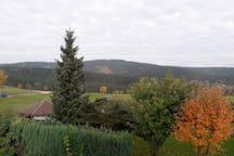 Ferienwohnung mit Blick ins schöne Erzgebirge