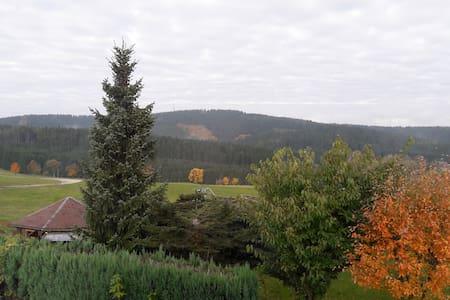 Ferienwohnung mit Blick ins schöne Erzgebirge - Schönheide - Daire