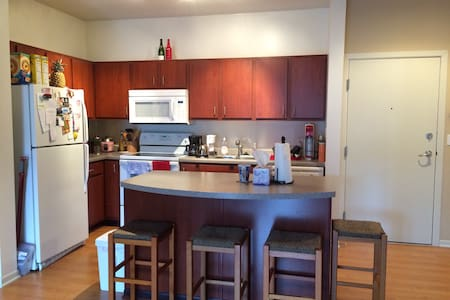 1 BR downtown: Loring Park. - Minneapolis - Apartment