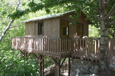 Douar SAMRA Treehouse -Atlas Range