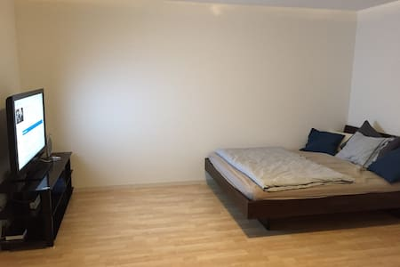1-room Appt with bathroom, TV, Wlan - Wohnung