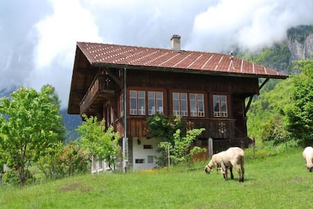 Chalet with garden and sauna - Talo