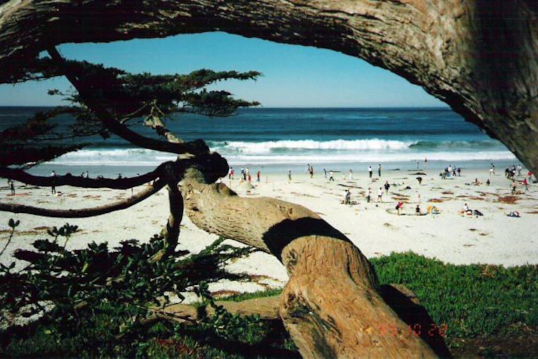 Carmel Beach . . . a 20-minute walk!
