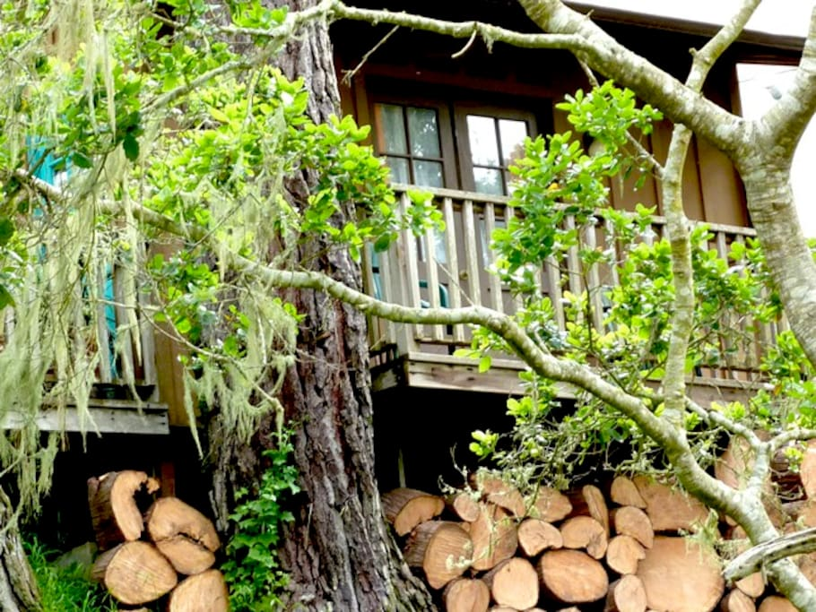 The cabin deck where you'll have morning coffee . . .