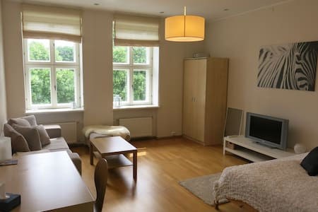 Spacious apartment in the centre - Appartement