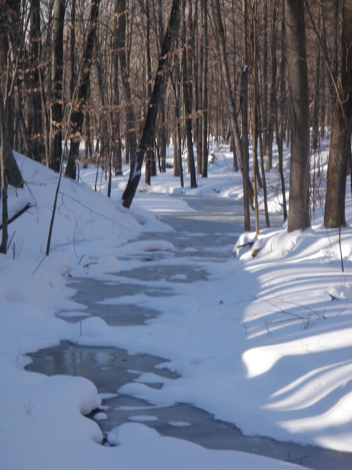 Snowshoe trails as you traverse creeks and 300 acres of wilderness trails
