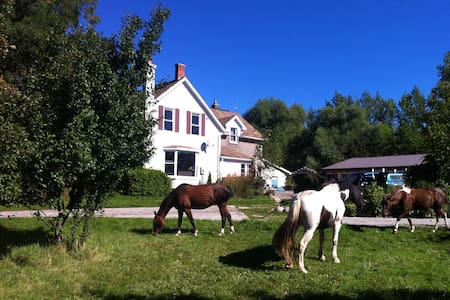 4 season recreational farmhouse 3 - Blue Mountains - Loft