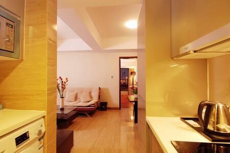广州琶洲临江上品精品公寓 一室一厅NO.1