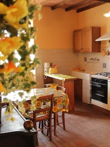 Tuscany for 2 in country side - Buonconvento - Apartment