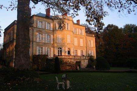 Chateau d'Aubigny - Schloss