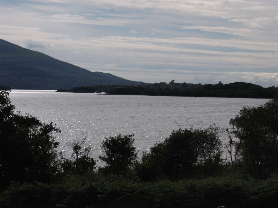from a walk in Killarney National Park