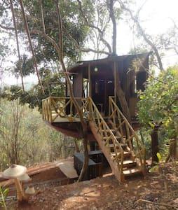 Unique Treehouse with a superb view - Casa en un árbol