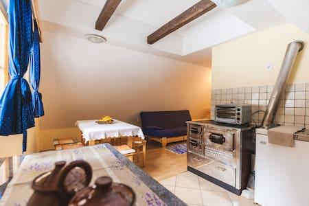 Pohorje Apartment 1 (6 persons) - Byt