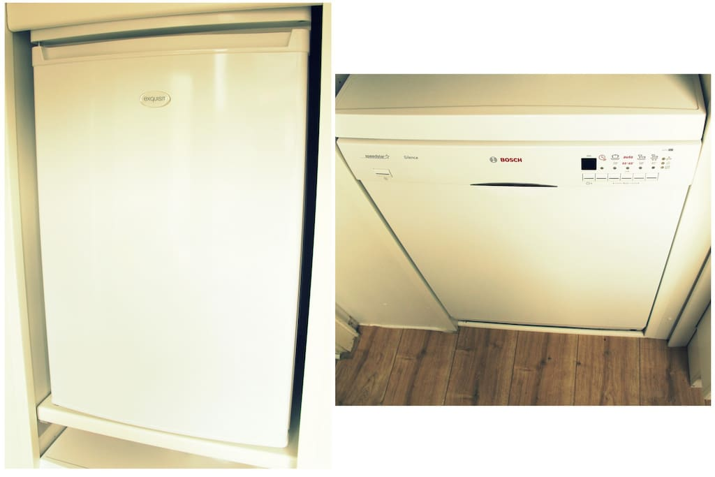 Brand new dish washer and fridge