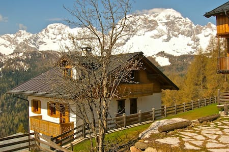 Discover the charm of the Dolomites - Apartment