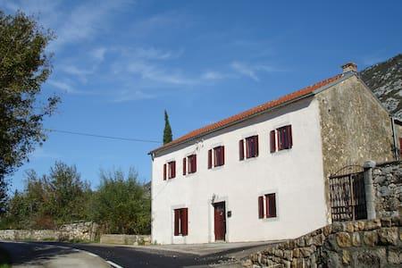 Luxury house in Drivenik  - Hus