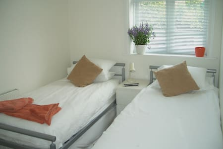 The Twin Room (with WC and basin) - Builth Wells - Bed & Breakfast