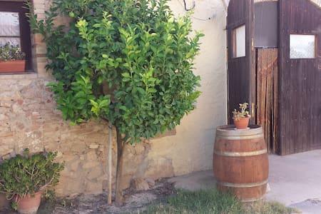 Converted barn on organic farm - Castellví de la Marca